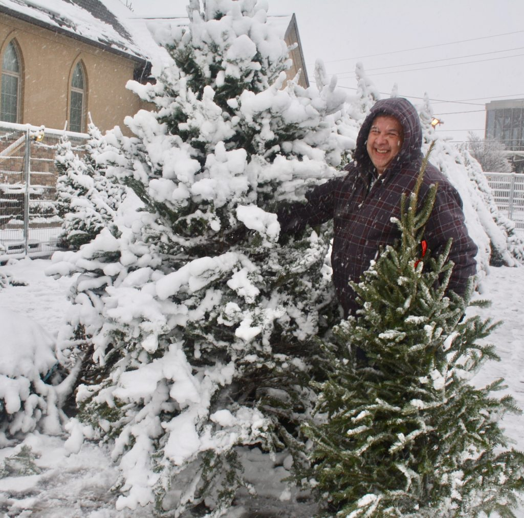 Local Christmas Trees: Lions Clubs Fundraising With Christmas Trees